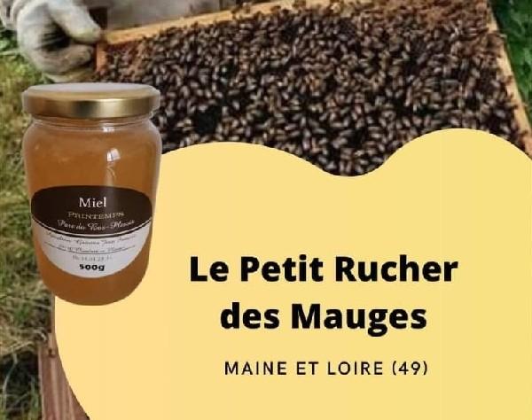 Miel de Printemps<br /> <br /> Ce miel est issu des différentes floraisons dont mes abeilles bénéficient au printemps autour du rucher  <br /> <br /> dans le Parc du Bas-Plessis Chaudron en Mauges.<br /> <br /> Merisiers, Pommiers, Cerisiers , Aubépine .Un goût parfumé et fruité.