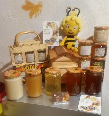 La gamme 2018 des miels de Printemps, nuance de couleurs et de textures. dans l'ordre : colza (blanc et crémeux), Fleurs de Printemps, acacia, bourdaine et tilleul.