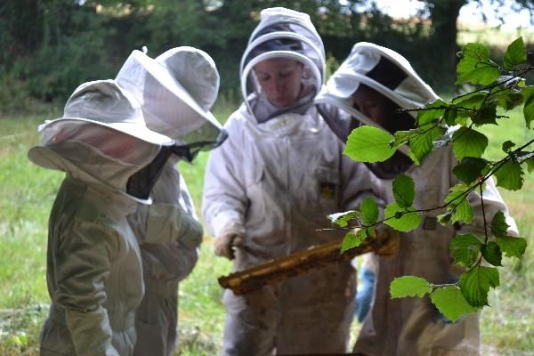Visite d'un des ruchers pour le Club Nature de Retiers<br />